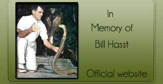 Bill Hasst Memoy of website